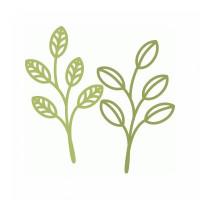 spring leaf twigs
